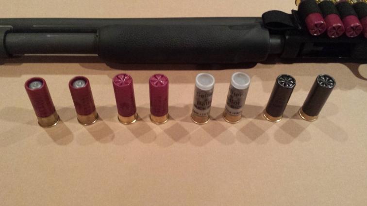 Shotgunloads1